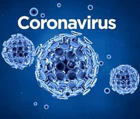 Coronavirus 2019-nCoV and It's Origins
