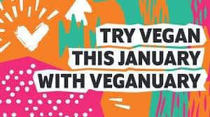 January is Veganuary!